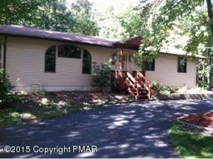 143 Wagner Way Pocono Lake, PA MLS# PM-28654