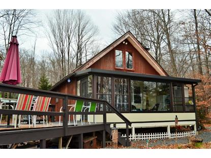 1101 Arrowhead Dr Pocono Lake, PA MLS# PM-30148