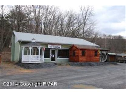 Route 209  East Stroudsburg, PA MLS# PM-6036