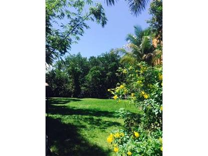 5839 PARADISE POINT DR Palmetto Bay, FL MLS# A10055982