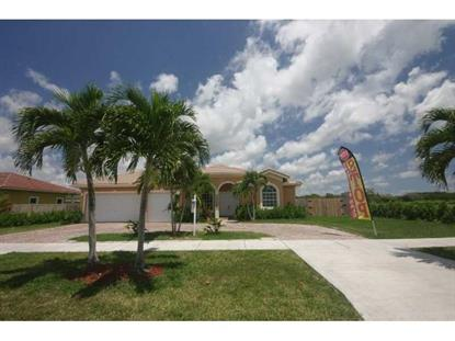 16455 SW 296th St Homestead, FL MLS# A10066882