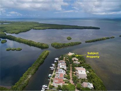 5839 PARADISE POINT DR Village of Palmetto Bay, FL MLS# A2129750