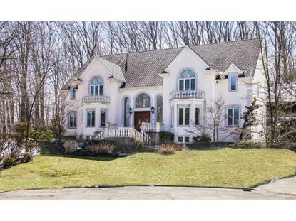 125 Annfield Court Staten Island, NY MLS# 1094969