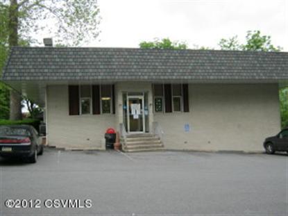 390 STATE ST Sunbury, PA MLS# 20-51716