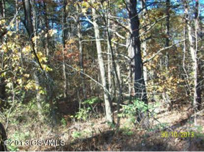 ARCHERY CLUB RD Sunbury, PA MLS# 20-57393
