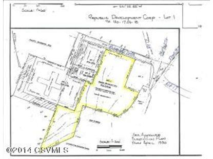 LOT 1 SOUTHVIEW  Liverpool, PA MLS# 20-58053