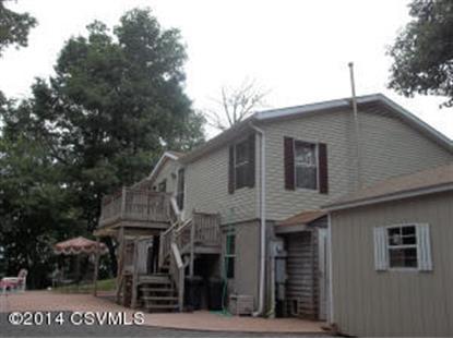 4517 BUFFALO  Lewisburg, PA MLS# 20-59946
