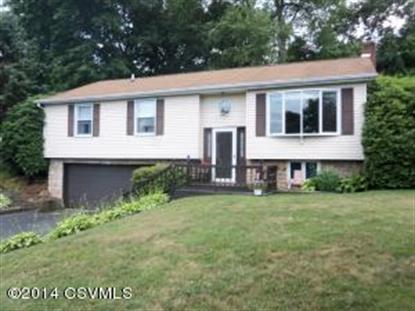 806 ROLLING GREEN DR Selinsgrove, PA MLS# 20-60049