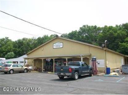 8220 STATE ROUTE 405  Milton, PA MLS# 20-60099