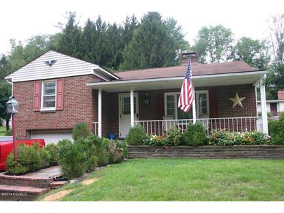 4951 STATE ROUTE 890  Sunbury, PA MLS# 20-60772