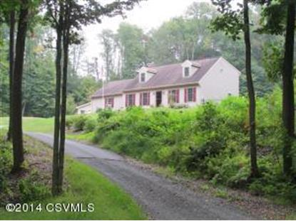 1520 MILE POST RD Sunbury, PA MLS# 20-61217