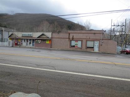 154-156 STATE ROUTE 239  Shickshinny, PA MLS# 20-61878