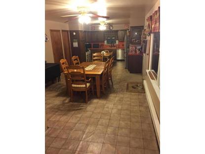 168 CAPTAIN BLOOM RD Sunbury, PA MLS# 20-62560