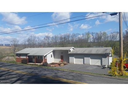 1234 MOORES SCHOOL RD Lewisburg, PA MLS# 20-62658