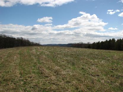 KAUFFMAN LANE  Northumberland, PA MLS# 20-63000