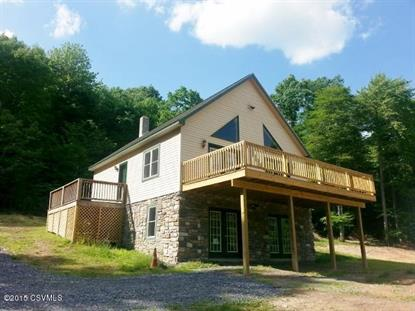 3023 LAUREL RUN RD Landisburg, PA MLS# 20-63545