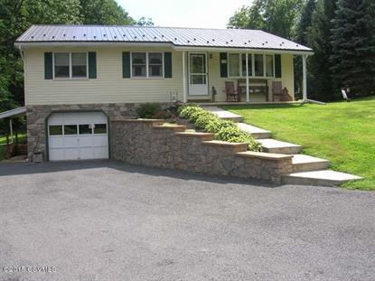 446 KENNEDY VALLEY RD Landisburg, PA MLS# 20-64605