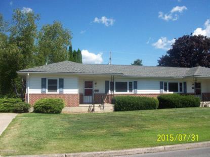 112 E GREEN ST  Mifflinburg, PA MLS# 20-64609