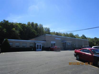 10934 STATE ROUTE 61  Mount Carmel, PA MLS# 20-65314