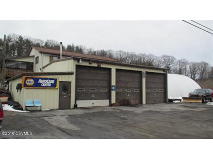 4720 SR 890  Sunbury, PA MLS# 20-66615