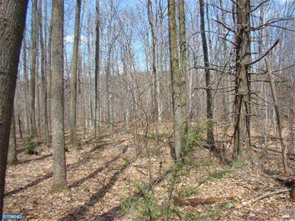 2 SWOPES VALLEY ROAD Pine Grove, PA MLS# 6379785