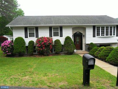 3 LANDERS COURT Ashland, PA MLS# 6400043