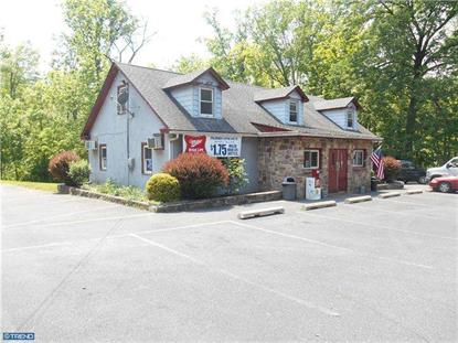 2300 ROUTE 313 Quakertown, PA MLS# 6401013