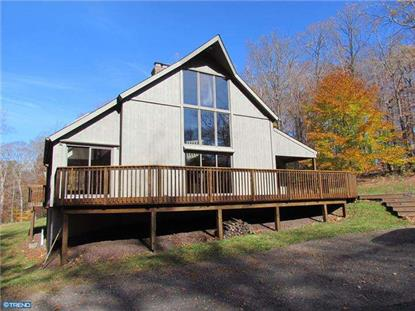 501 SKUNK HOLLOW RD Chalfont, PA MLS# 6428847