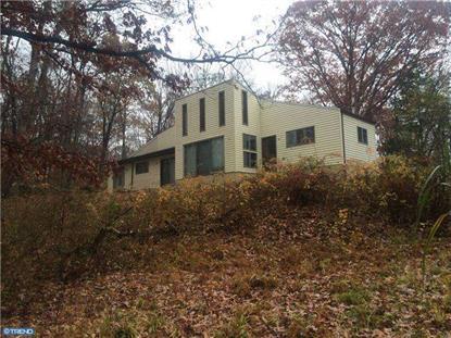64 ROCK RIDGE RD Upper Black Eddy, PA MLS# 6484194