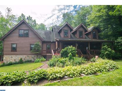 8 HOMESTEAD RD Kintnersville, PA MLS# 6743679