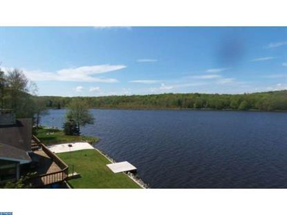 1259 ARROWHEAD DRIVE Pocono Lake, PA MLS# 6800038
