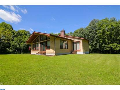 1028 ROUNDHOUSE RD Kintnersville, PA MLS# 6847347