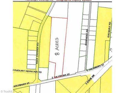 1745 Salisbury Street Asheboro, NC MLS# 705281