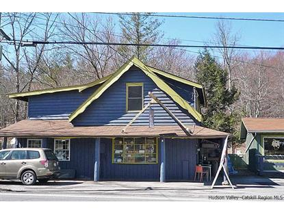 1538 Route 212 Saugerties, NY 12477 MLS# 20170272