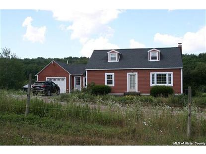 2233 Dry Brook Road Delhi, NY MLS# 20134587