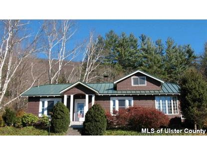 24 Waterworks Road Phoenicia, NY MLS# 20143736
