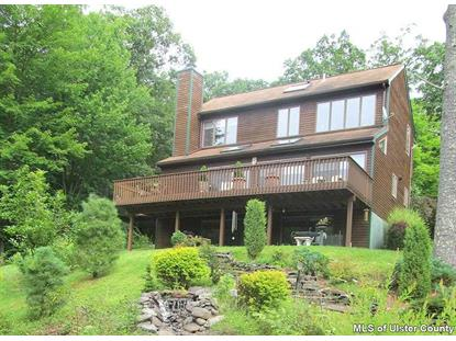 145 MOUNTAIN LAUREL RD Phoenicia, NY MLS# 20144335