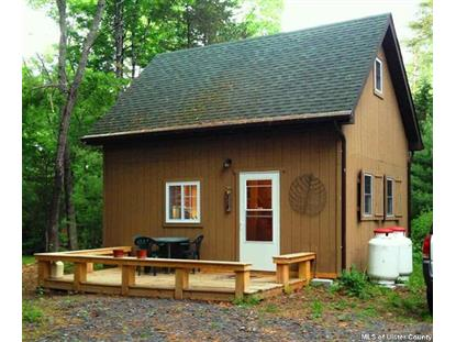 Address not provided Saugerties, NY 12477 MLS# 20152350