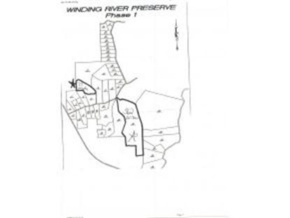 TRACT 46 WINDING RIVER PRESERVE  Bronson, FL MLS# 381729