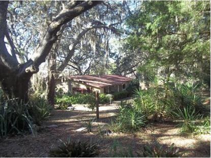 Address not provided Belleview, FL MLS# 385691