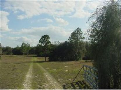 12790 NE 75 ST  Bronson, FL MLS# 396771