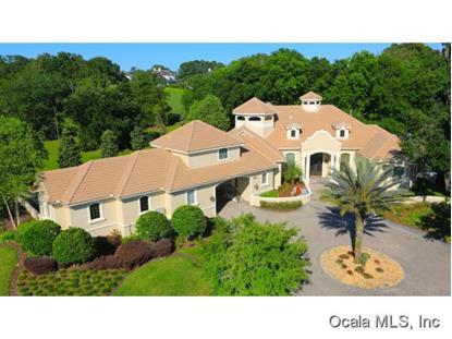 3975 NW 85 TERR  Ocala, FL MLS# 404635