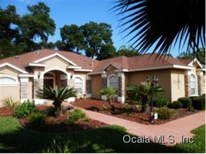 Address not provided Belleview, FL MLS# 407645