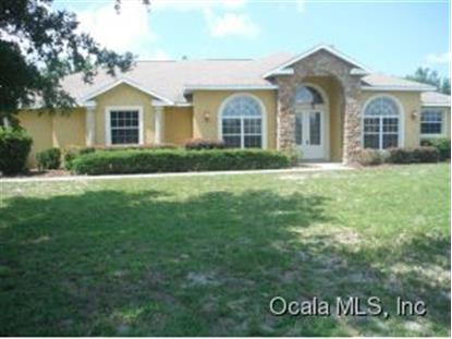 330 NW 113 CIR  Ocala, FL MLS# 411806