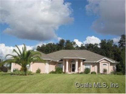 9875 SE 67 AVENUE RD  Belleview, FL MLS# 416067
