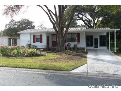 1669 W SCHWARTZ BLVD  The Villages, FL MLS# 417395