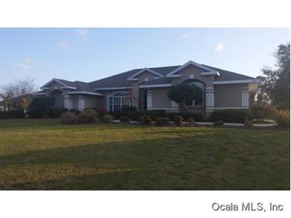 6890 SE 99 PL  Belleview, FL MLS# 421484