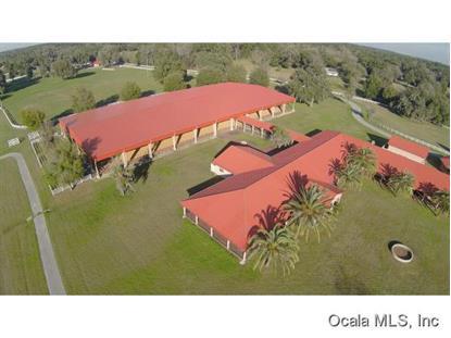 1500 SE 59 ST  Ocala, FL MLS# 422281