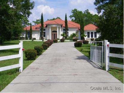 3067 N BRAVO  Beverly Hills, FL MLS# 431319