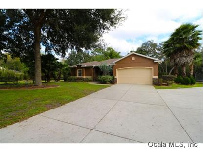 13605 SE 102nd Ct  Belleview, FL MLS# 436799